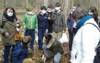 La forêt Verte prise d'assaut par les élèves de la classe de 3E